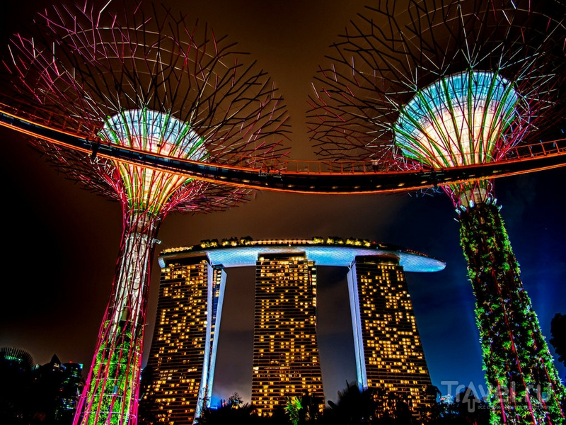 supertrees_singapore_2