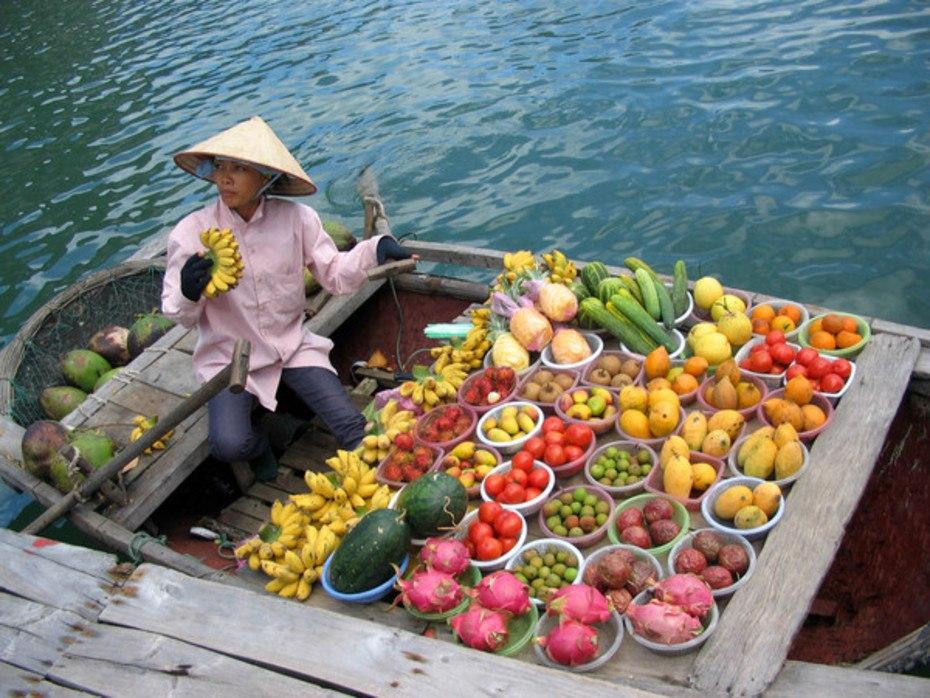 Кто был в вьетнаме отзывы туристов